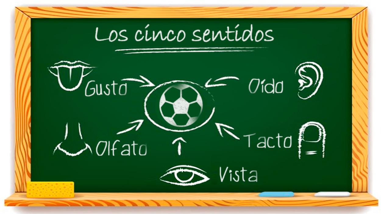 Los cinco sentidos y el fútbol / FOTOMONTAJE DE PdF