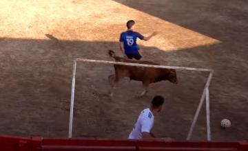 Balontauro, la mezcla de fútbol y toros / YOUTUBE