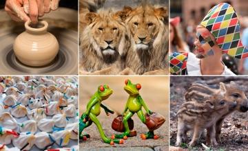 Alfarero, leones, arlequín, merengues, granotas y jabatos / FOTOMONTAJE DE PdF