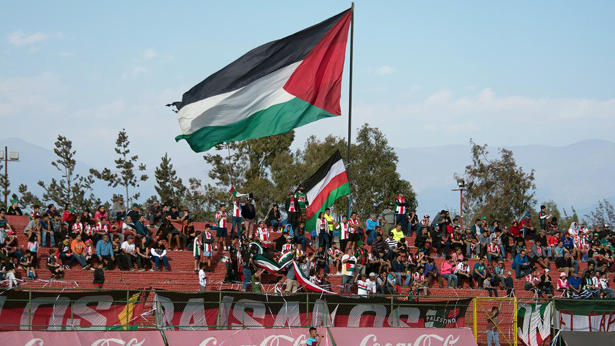 Hinchada del Palestino, club chileno / CARLOS FIGUEROA - WIKIPEDIA
